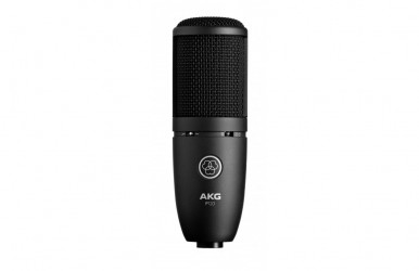 Micro Statique studio AKG P120