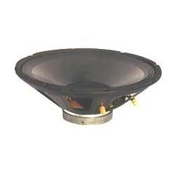 Haut parleur PROMO 25 cm 150w